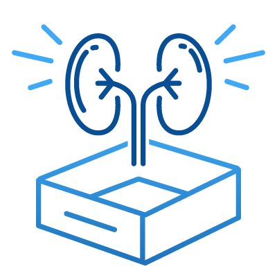 Icon_KIT - Kidney Care